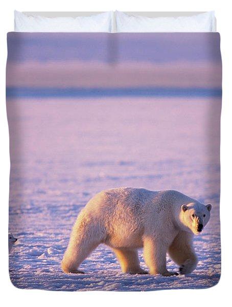 Arctic Fox Follows A Polar Bear Duvet Cover