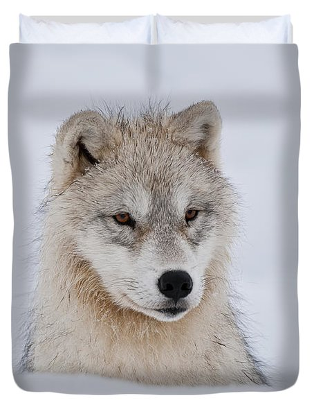 Arctic Pup In Snow Duvet Cover by Wolves Only