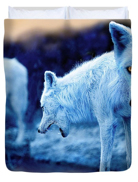 Arctic White Wolves Duvet Cover by Mal Bray