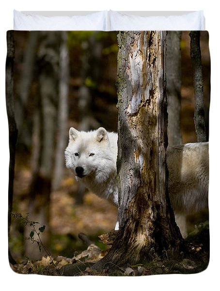 Duvet Cover featuring the photograph Arctic Wolf In Forest by Wolves Only