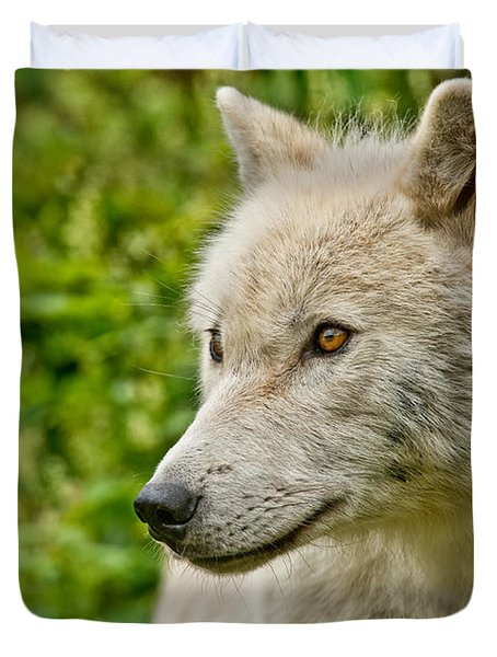 Arctic Wolf Pictures 241 Duvet Cover