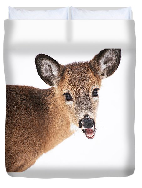 Are You Done Taking Pictures Duvet Cover by Karol Livote