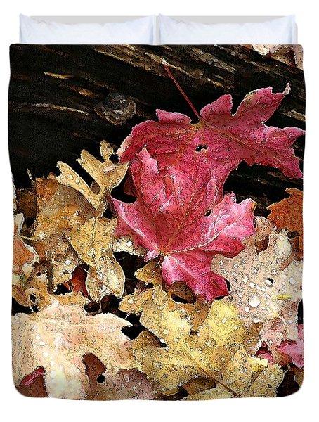 Arizona Fall Colors Duvet Cover