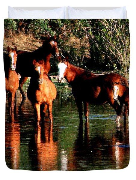 Arizona Wild Horses Duvet Cover