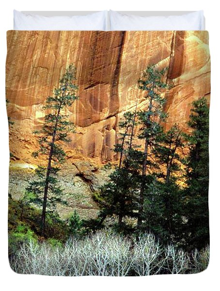 Arizona's Betatkin Aspens Duvet Cover by Ed  Riche