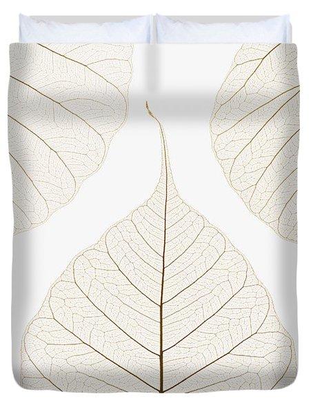 Arranged Leaves Duvet Cover by Kelly Redinger