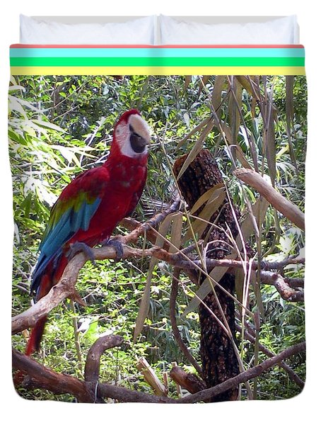 Duvet Cover featuring the photograph Artistic Wild Hawaiian Parrot by Joseph Baril