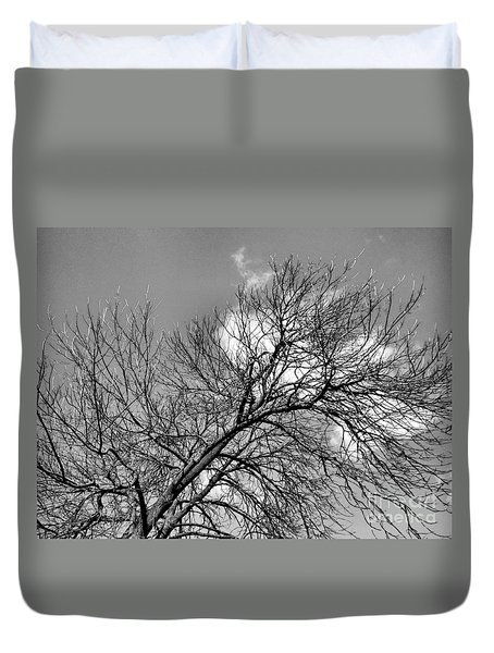 Duvet Cover featuring the photograph Ash And Light by Robyn King