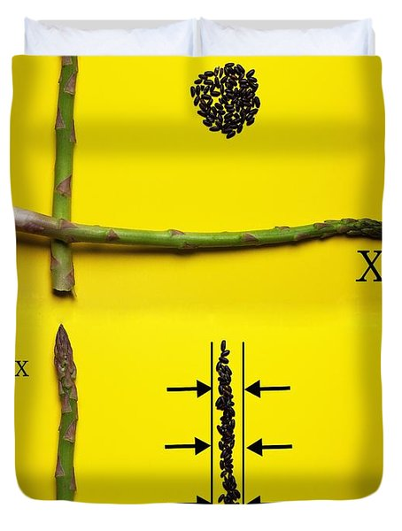 Duvet Cover featuring the photograph Asparagus And Black Rice Depicting Heisenberg Uncertainty Food Physics by Paul Ge