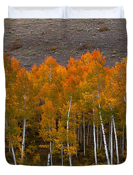 Aspen Band Duvet Cover