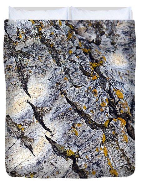 Aspen Bark Duvet Cover