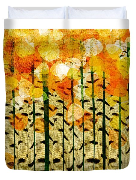 Aspen Colorado Abstract Square 4 Duvet Cover
