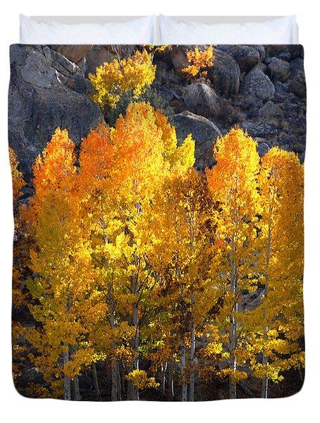 Duvet Cover featuring the photograph Aspen Gold by Lynn Bauer