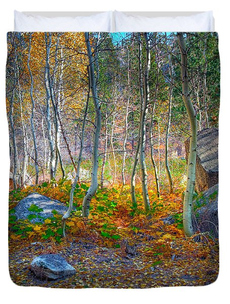 Duvet Cover featuring the photograph Aspen Grove by Jim Thompson