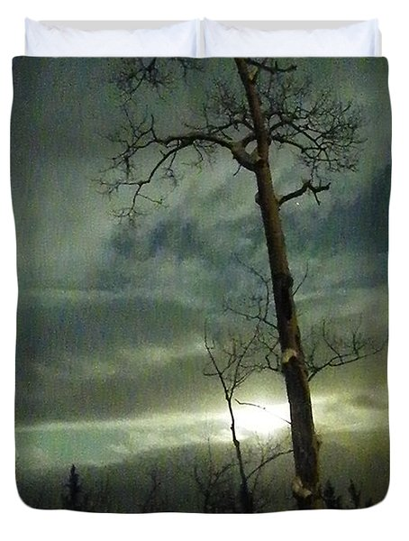 Aspen In Moonlight Duvet Cover by Brian Boyle