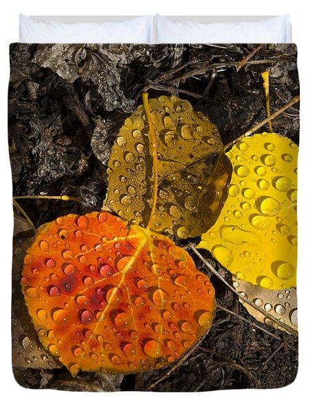 Aspen Leaves On Bishop Creek Duvet Cover