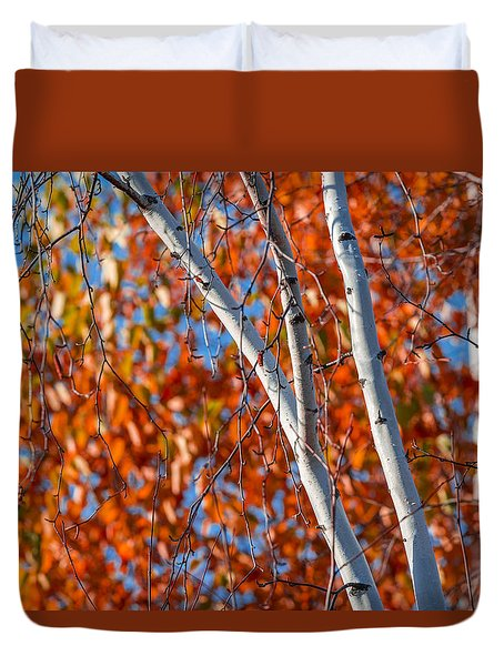 Duvet Cover featuring the photograph Aspen by Sebastian Musial