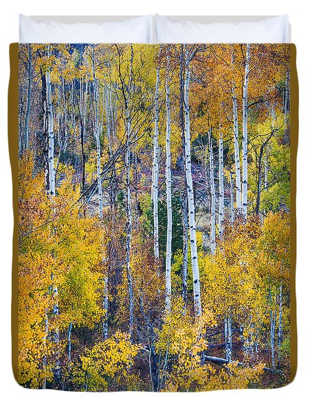 Aspen Tree Magic Cottonwood Pass Duvet Cover by James BO  Insogna