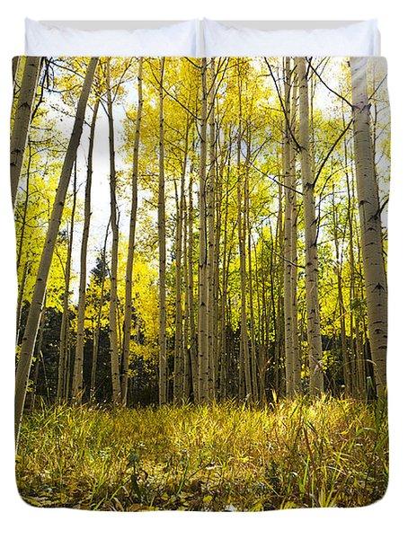 Aspen Trees Colorado Duvet Cover