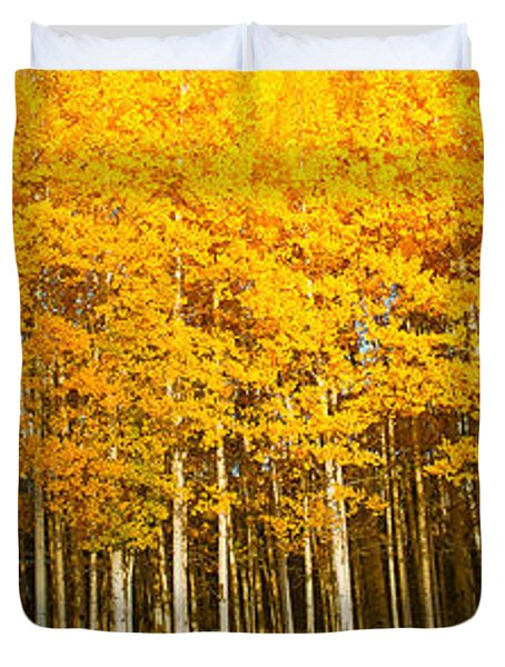 Aspen Trees In Autumn, Last Dollar Duvet Cover