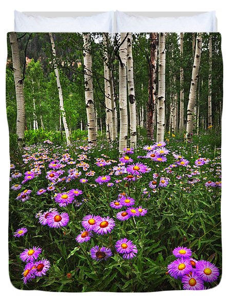 Aspens And Asters Duvet Cover