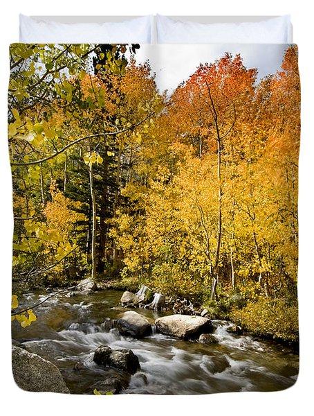 Aspens At Bishop Creek Duvet Cover