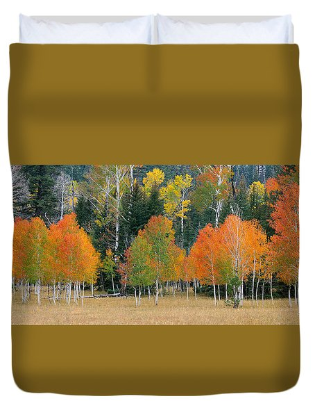 Aspens And Meadow-pan Duvet Cover