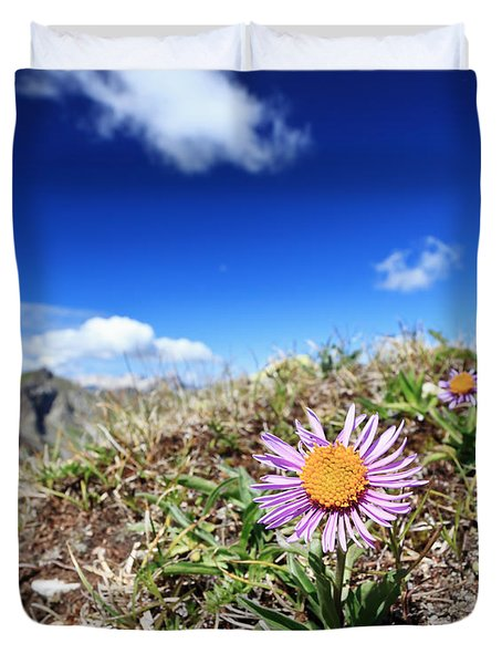 Aster Alpinus Duvet Cover by Antonio Scarpi