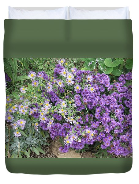Asters Light And Dark Duvet Cover