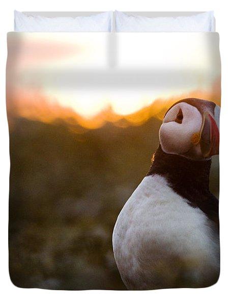 Atlantic Puffin At Sunrise Skomer Duvet Cover by Sebastian Kennerknecht