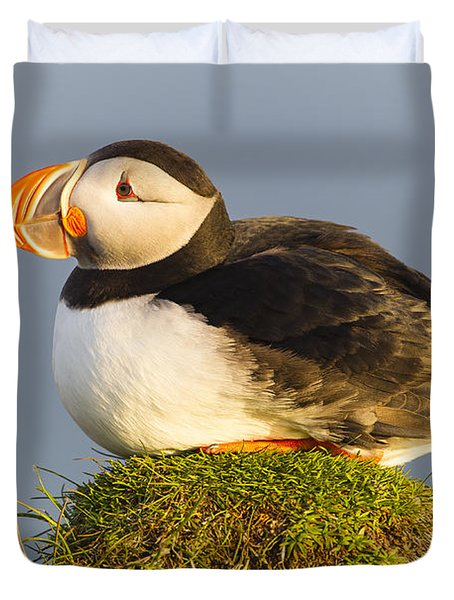 Duvet Cover featuring the photograph Atlantic Puffin Iceland by Peer von Wahl