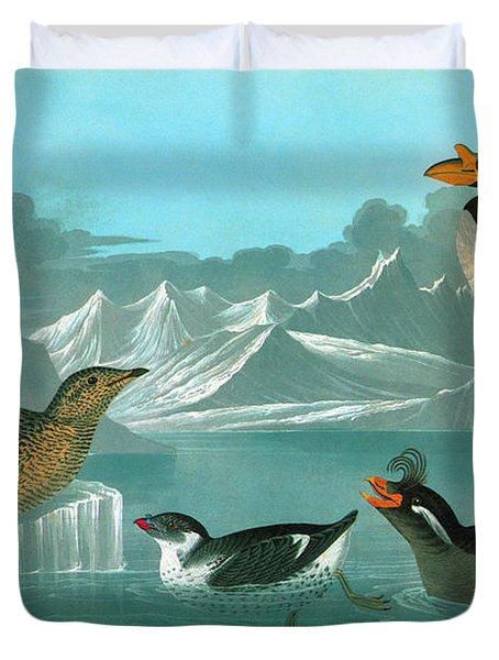 Audubon Auks Duvet Cover