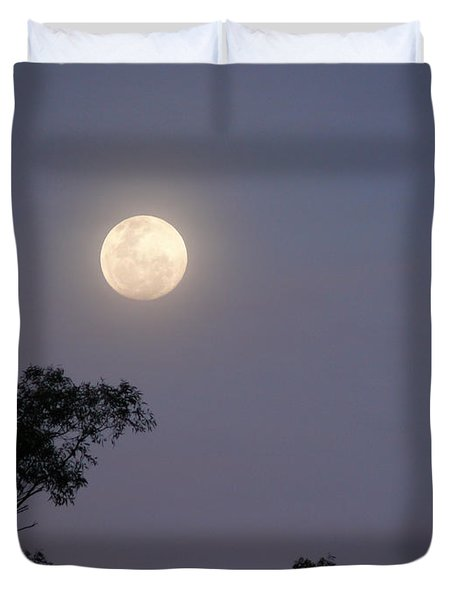 August Moon Duvet Cover by Evelyn Tambour