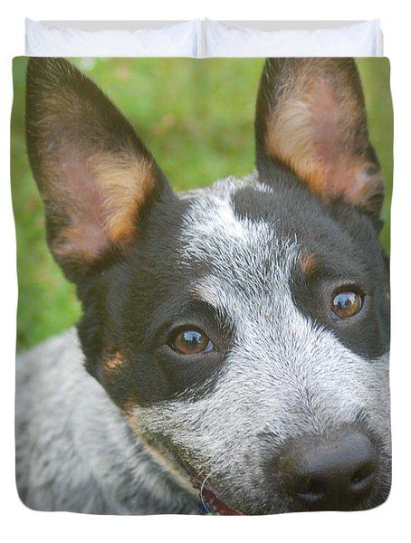 Australian Cattle Dog Duvet Cover