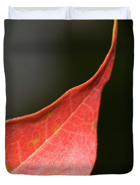 Duvet Cover featuring the photograph Autumn 2 by Tara Lynn