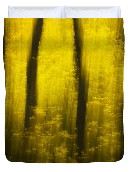 Autumn Apparitions Duvet Cover by Peter Coskun