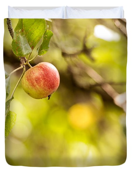 Autumn Apple Duvet Cover