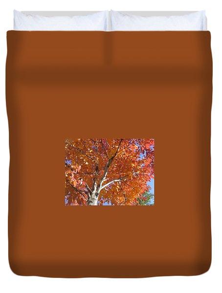 Autumn Aspen Duvet Cover