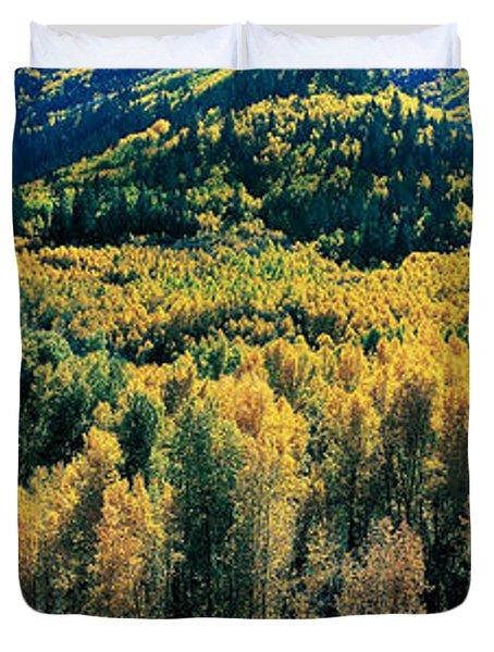 Autumn Aspens, Colorado, Usa Duvet Cover