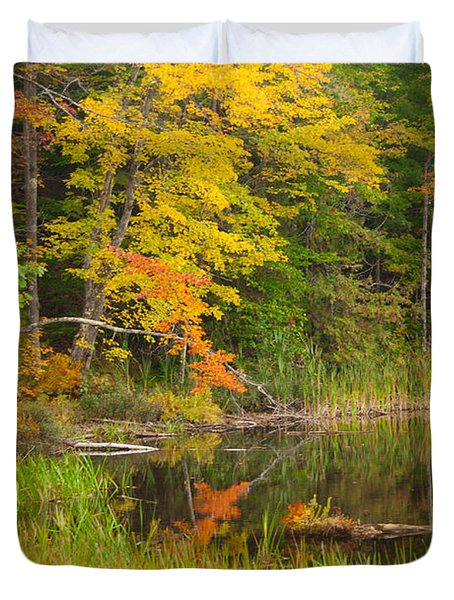 Duvet Cover featuring the photograph Autumn At Egypt Lake by Alana Ranney
