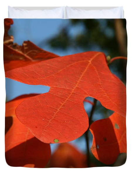 Duvet Cover featuring the photograph Autumn Attention by Neal Eslinger