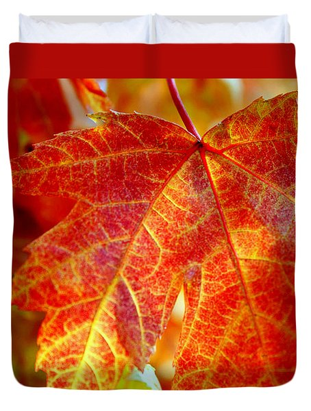 Autumn Blaze Duvet Cover