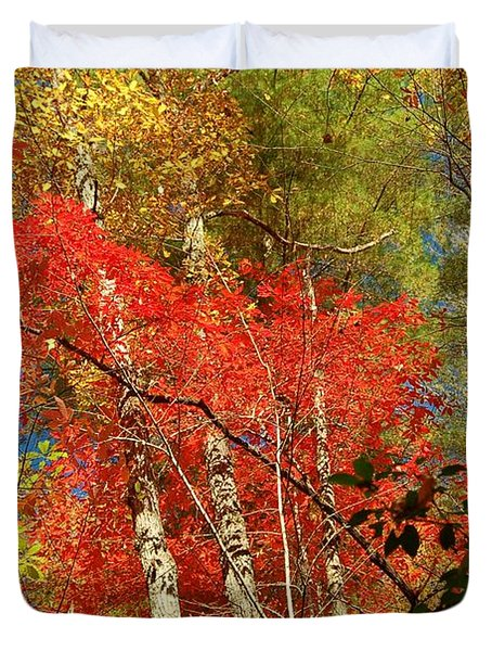 Autumn Colors Duvet Cover by Patrick Shupert