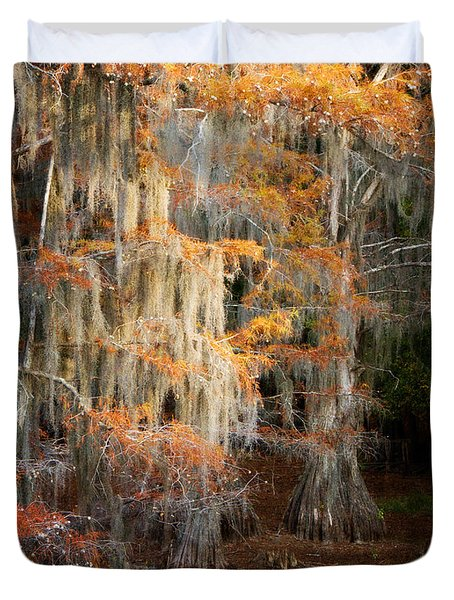 Duvet Cover featuring the photograph Autumn Cypress by Lana Trussell