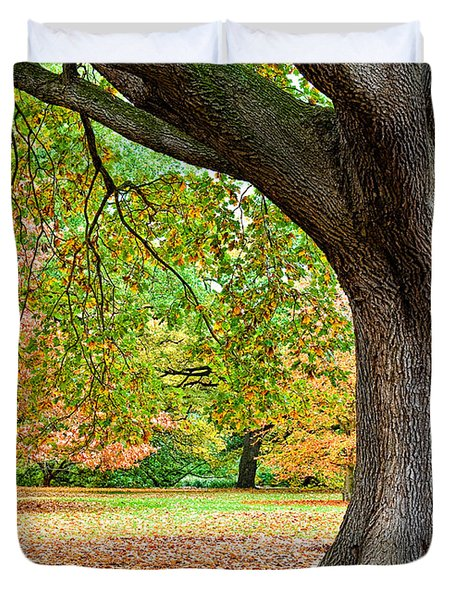 Autumn Duvet Cover by Dave Bowman