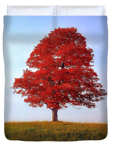 Autumn Flame Duvet Cover by Steve Harrington