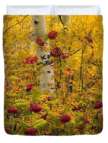 Autumn Forest Colors Duvet Cover