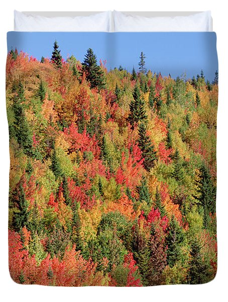 Autumn In Gaspesie Natl Park Quebec Duvet Cover