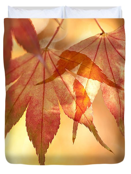 Autumn Glow Duvet Cover by Anne Gilbert