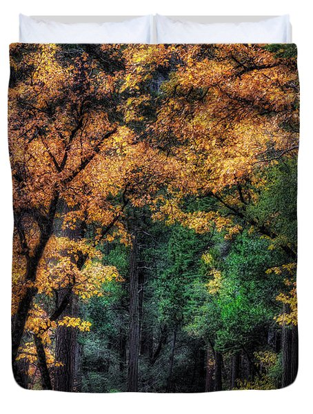 Autumn Glow Duvet Cover